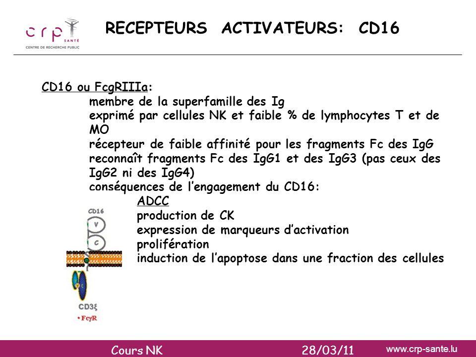 RECEPTEURS ACTIVATEURS: CD16