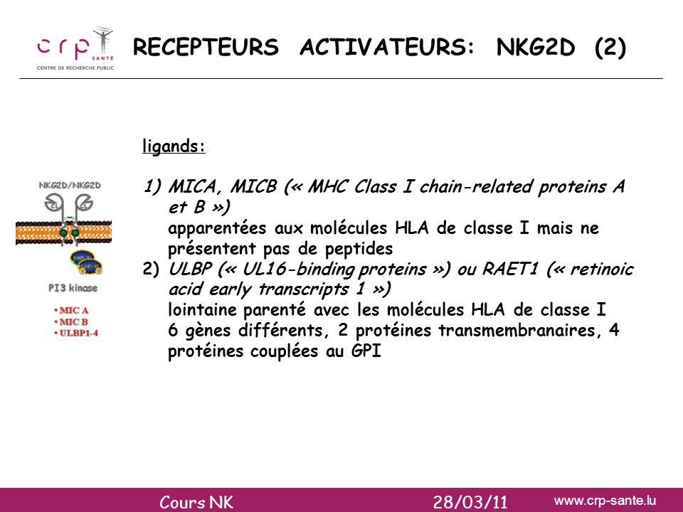 RECEPTEURS ACTIVATEURS: NKG2D (2)