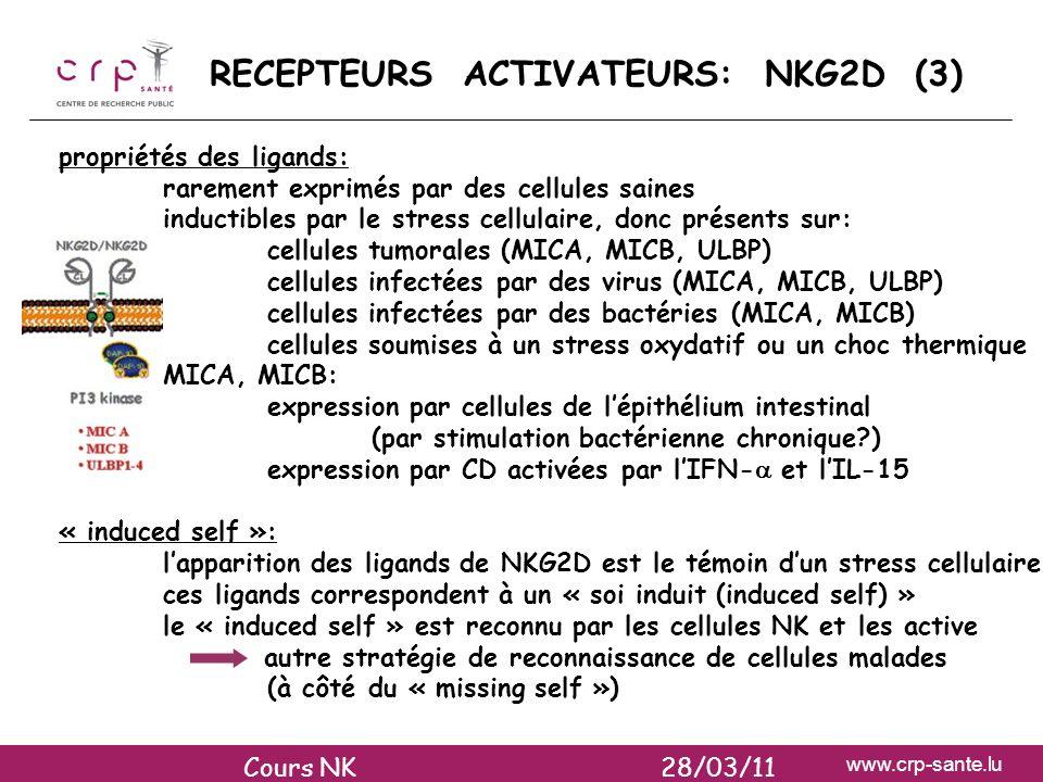 RECEPTEURS ACTIVATEURS: NKG2D (3)