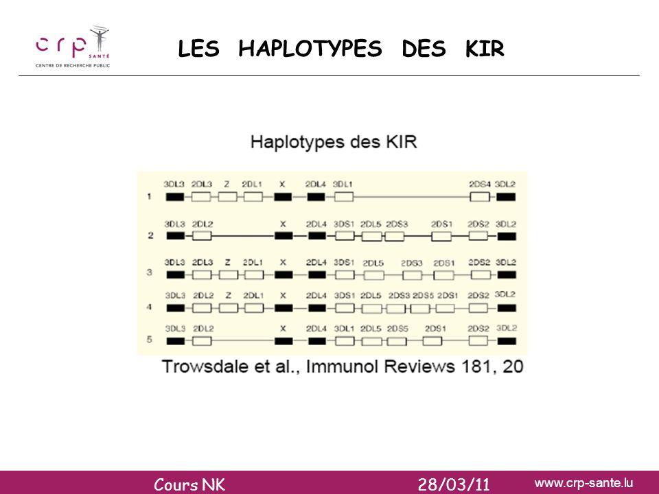 LES HAPLOTYPES DES KIR Cours NK 28/03/11