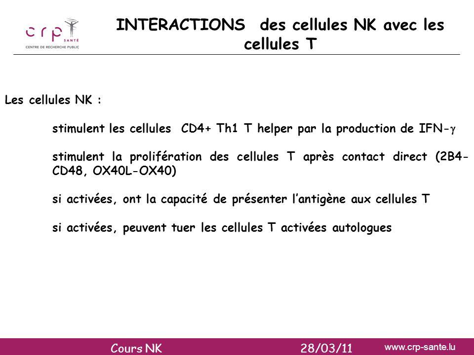 INTERACTIONS des cellules NK avec les cellules T