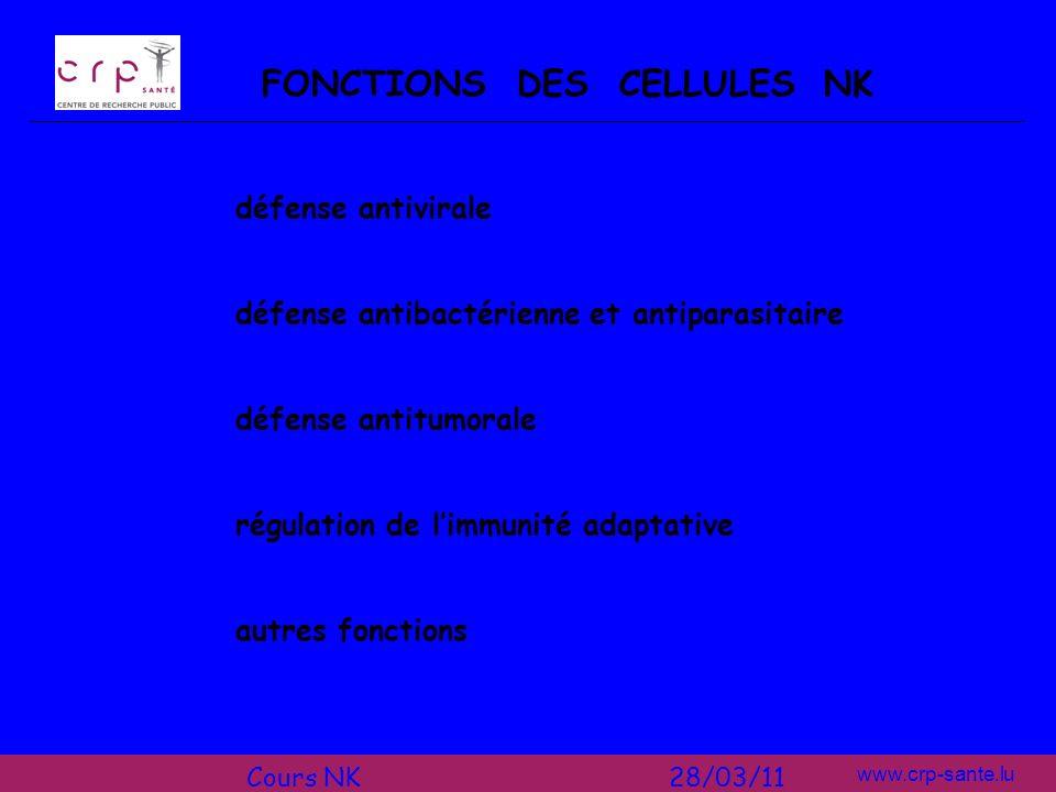 FONCTIONS DES CELLULES NK