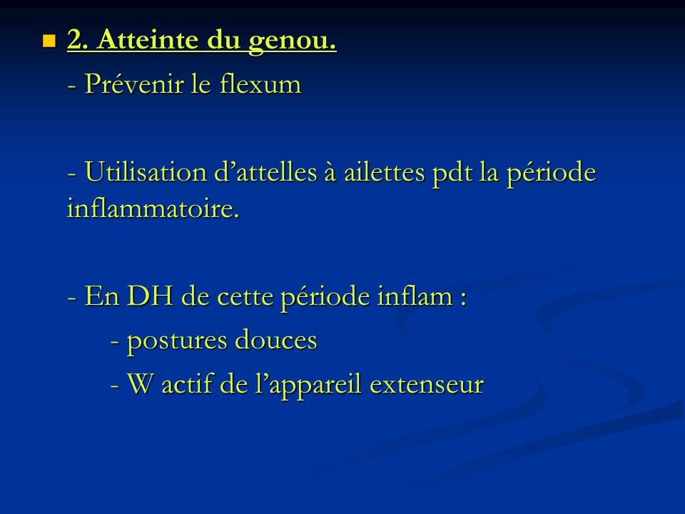 2. Atteinte du genou. - Prévenir le flexum. - Utilisation d'attelles à ailettes pdt la période inflammatoire.