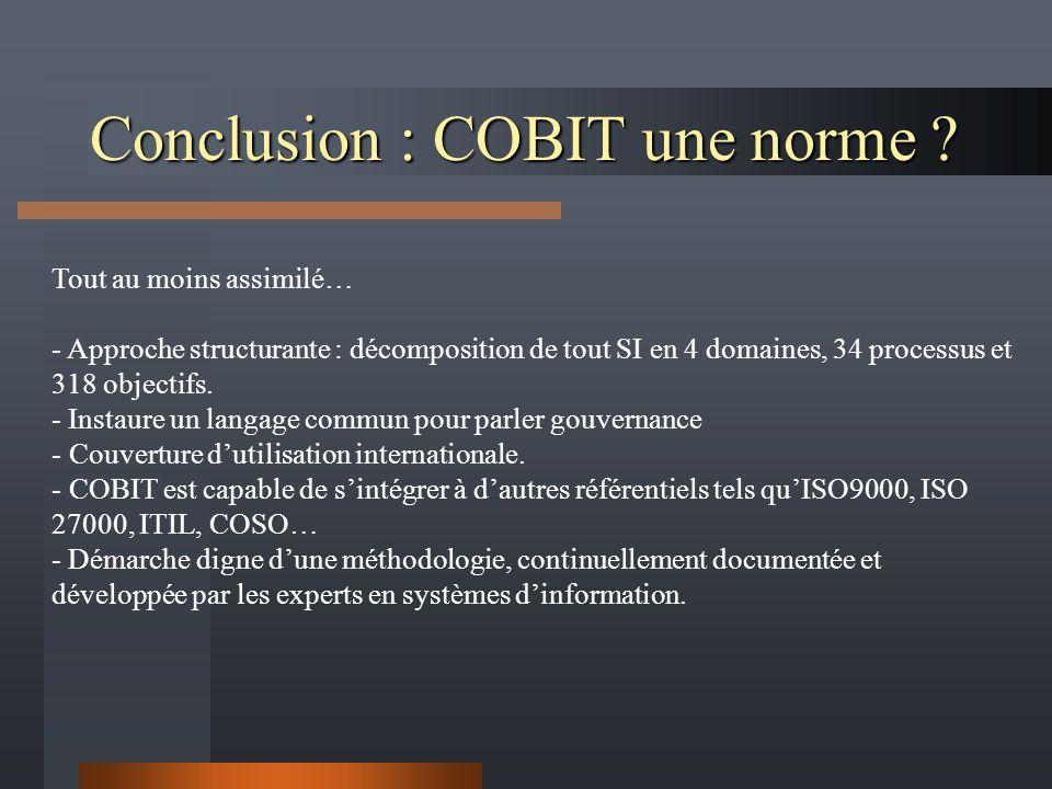 Conclusion : COBIT une norme