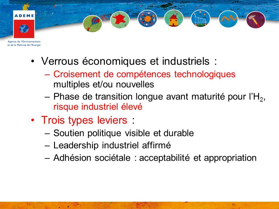 Verrous économiques et industriels :