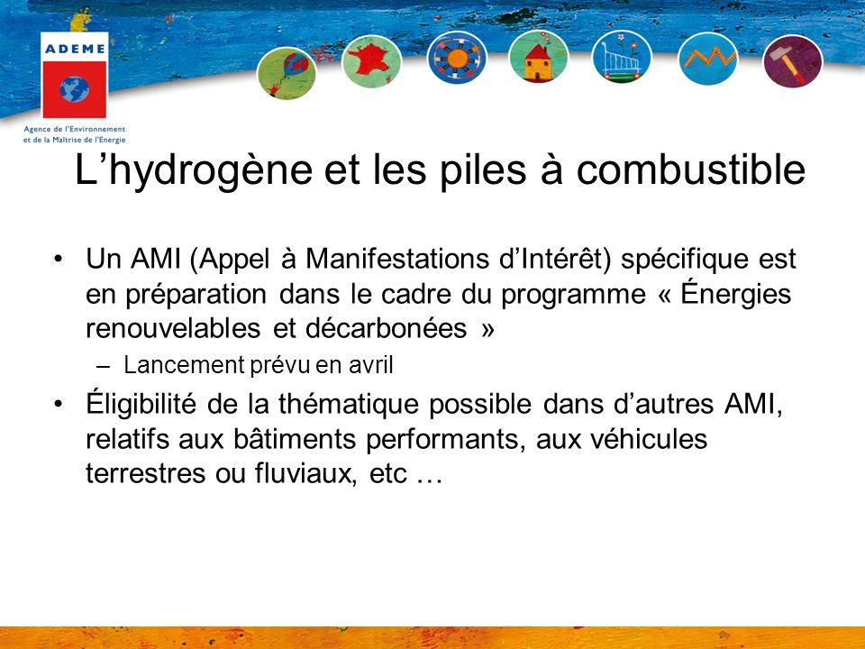 L'hydrogène et les piles à combustible