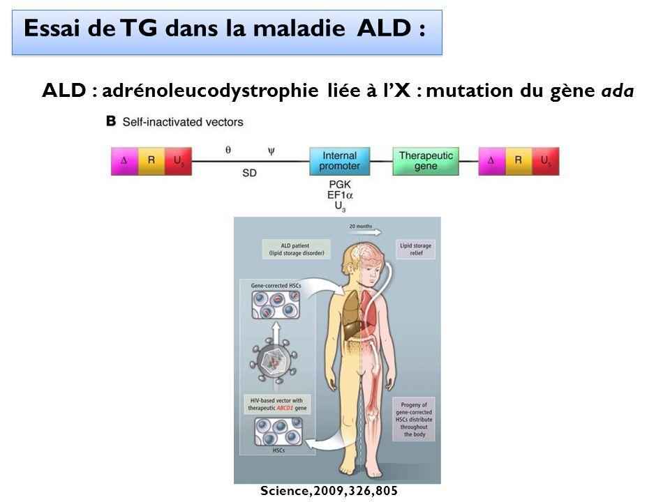 Essai de TG dans la maladie ALD :