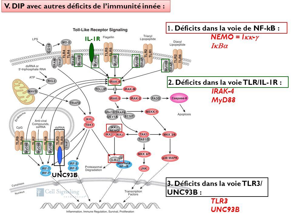 V. DIP avec autres déficits de l'immunité innée :