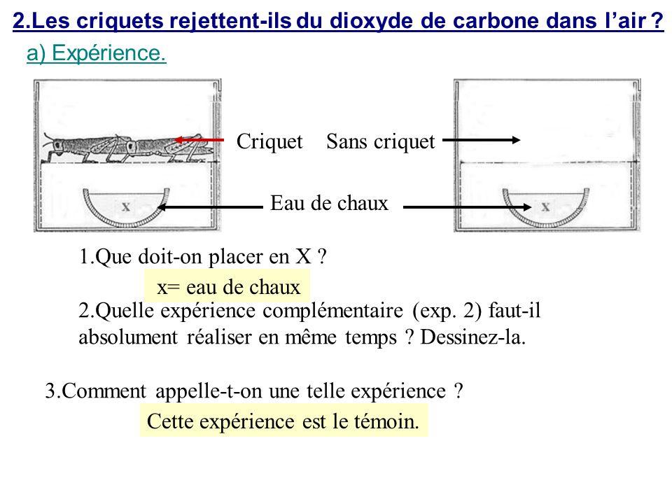 2.Les criquets rejettent-ils du dioxyde de carbone dans l'air