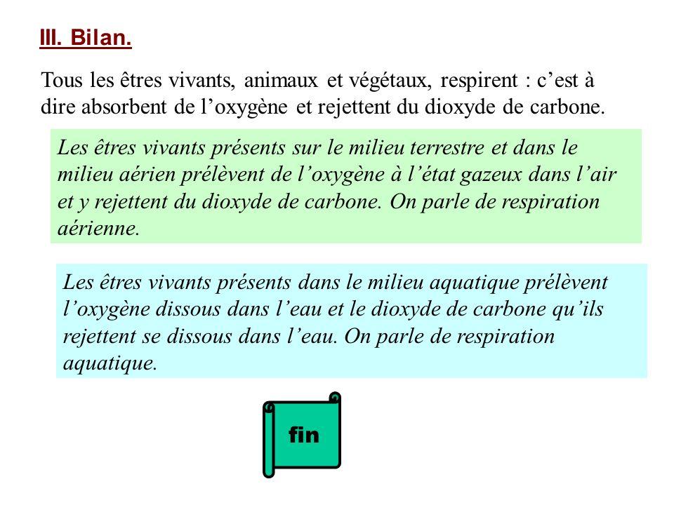 III. Bilan. Tous les êtres vivants, animaux et végétaux, respirent : c'est à dire absorbent de l'oxygène et rejettent du dioxyde de carbone.