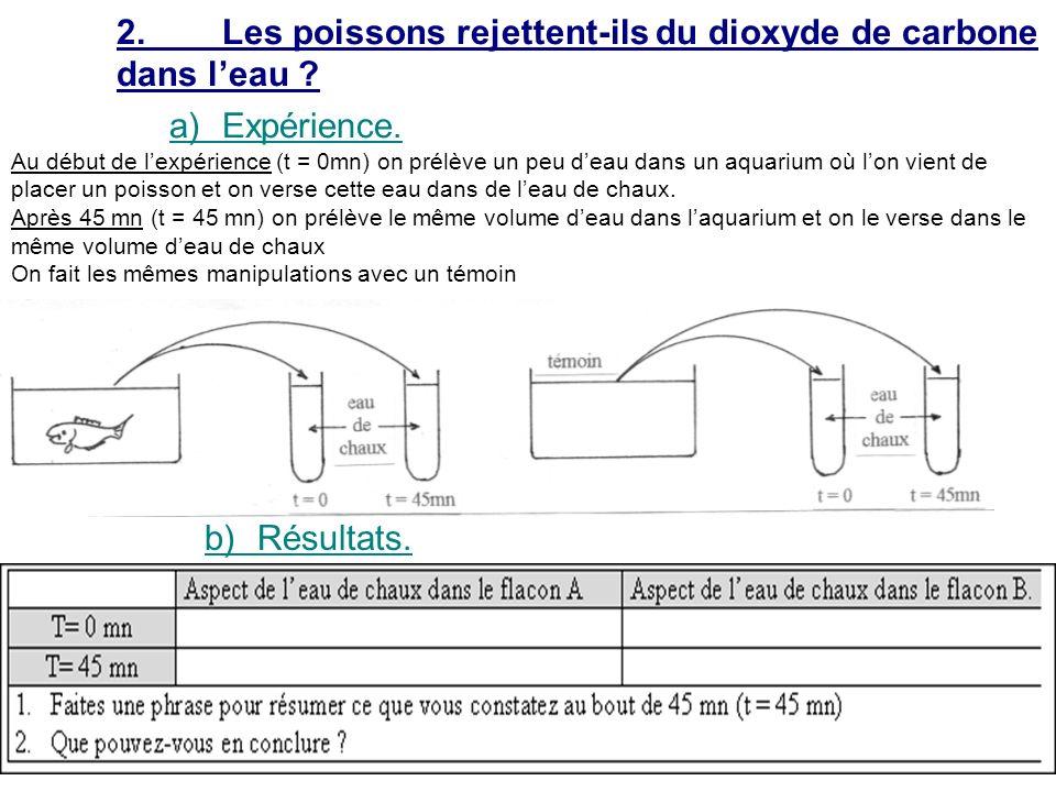 2. Les poissons rejettent-ils du dioxyde de carbone dans l'eau