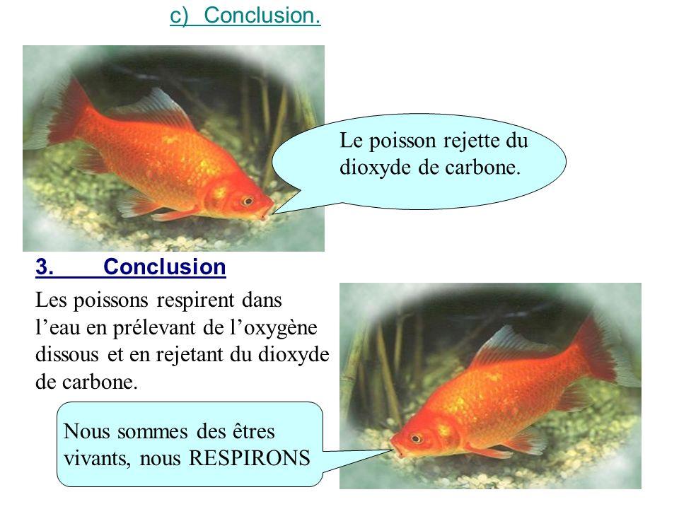 c) Conclusion. Le poisson rejette du dioxyde de carbone. 3. Conclusion.