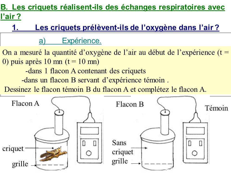 B. Les criquets réalisent-ils des échanges respiratoires avec l'air