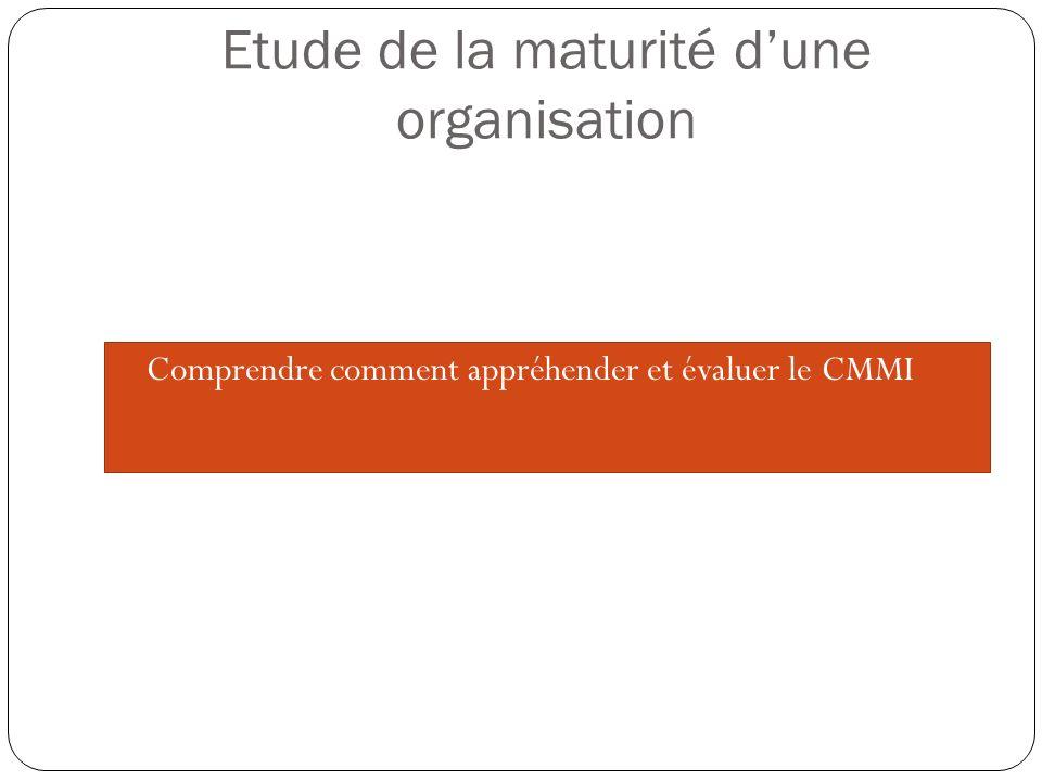 Etude de la maturité d'une organisation