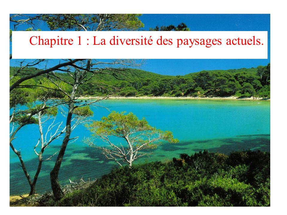 Chapitre 1 : La diversité des paysages actuels.