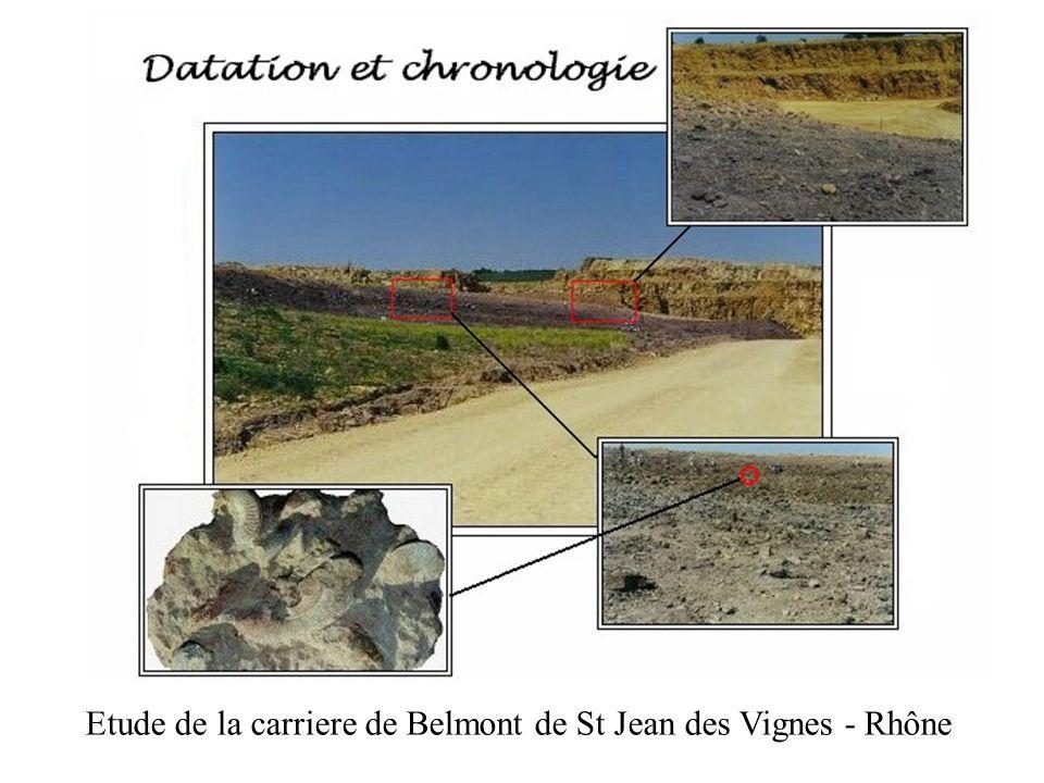 Etude de la carriere de Belmont de St Jean des Vignes - Rhône