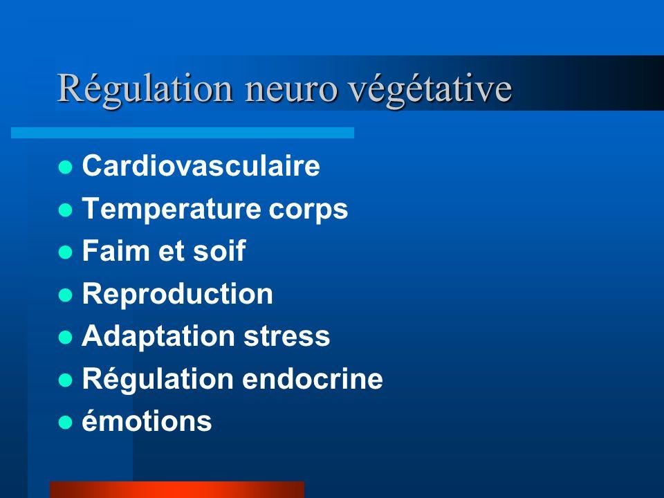 Régulation neuro végétative