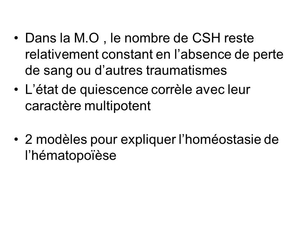 Caractéristiques des CSH