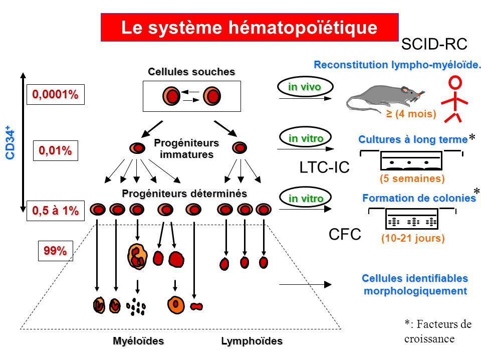 Le système hématopoïétique Cellules identifiables morphologiquement