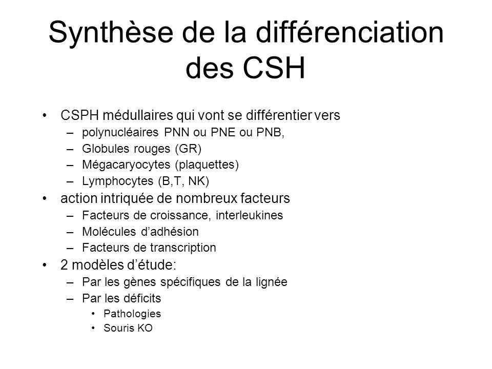 Synthèse de la différenciation des CSH