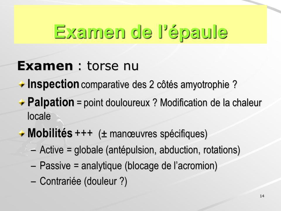 Examen de l'épaule Examen : torse nu