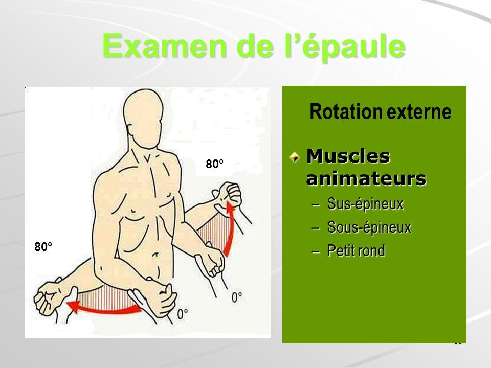 Examen de l'épaule Rotation externe Muscles animateurs Sus-épineux