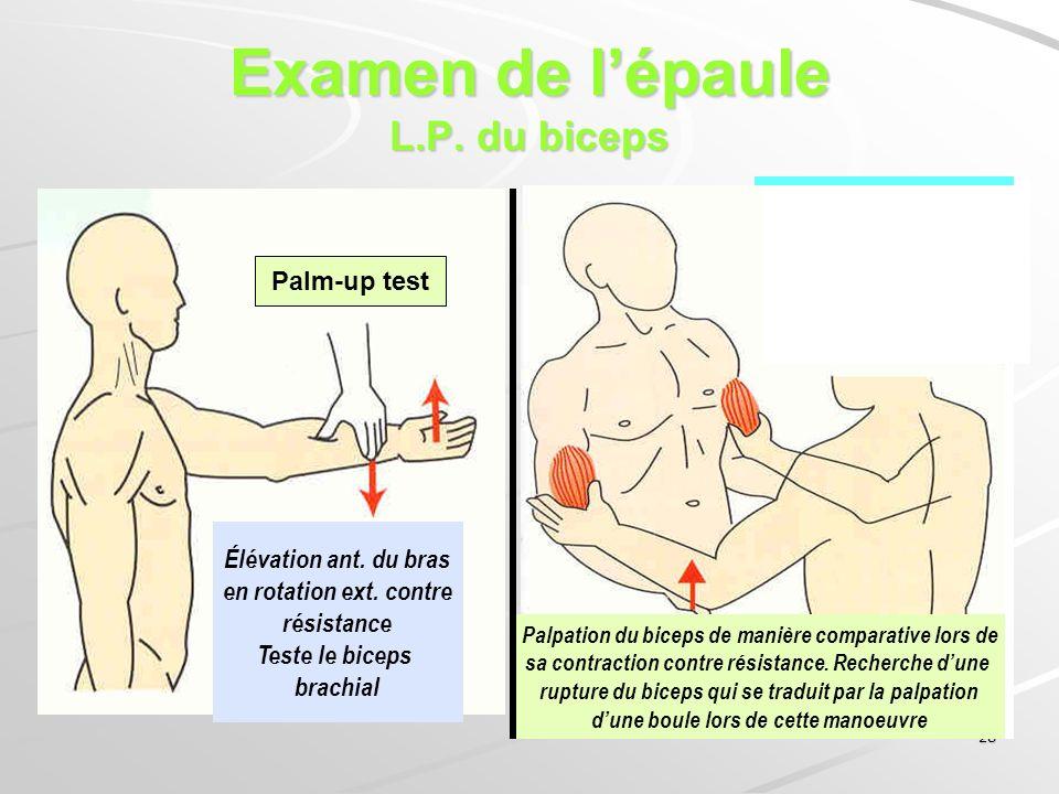 Examen de l'épaule L.P. du biceps