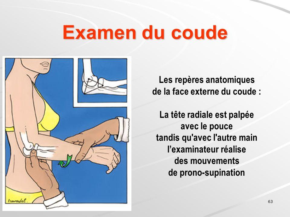 Examen du coude Les repères anatomiques de la face externe du coude :