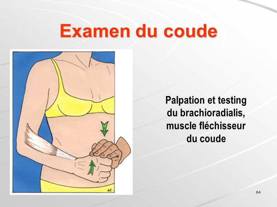 Examen du coude Palpation et testing du brachioradialis,