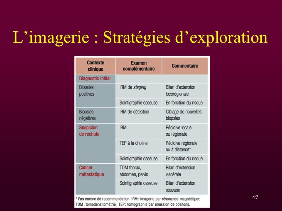 L'imagerie : Stratégies d'exploration