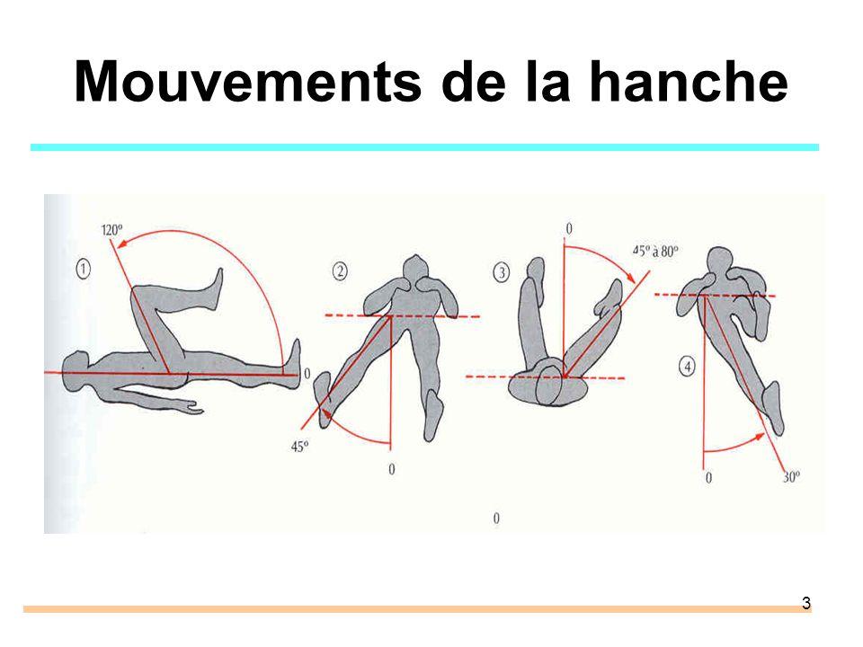 Mouvements de la hanche
