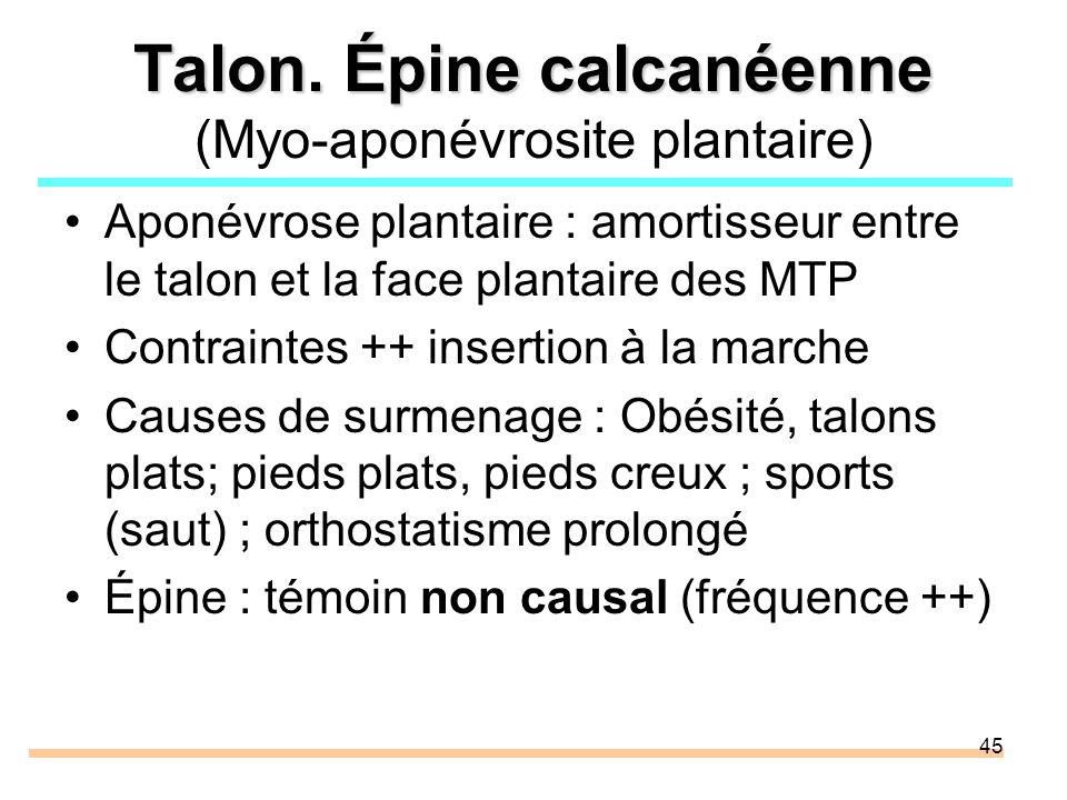 Talon. Épine calcanéenne (Myo-aponévrosite plantaire)