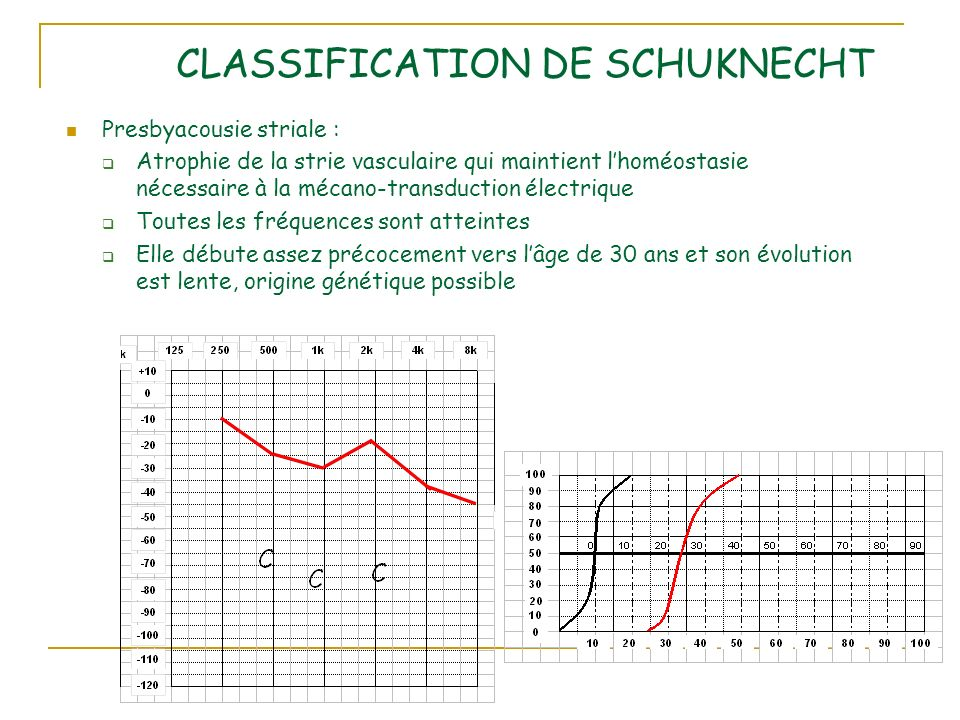 CLASSIFICATION DE SCHUKNECHT