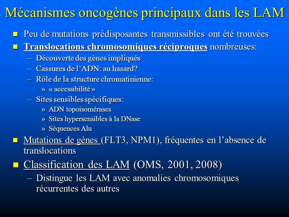 Mécanismes oncogènes principaux dans les LAM