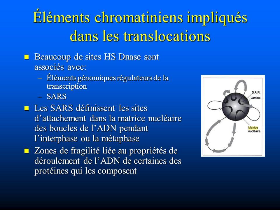 Éléments chromatiniens impliqués dans les translocations