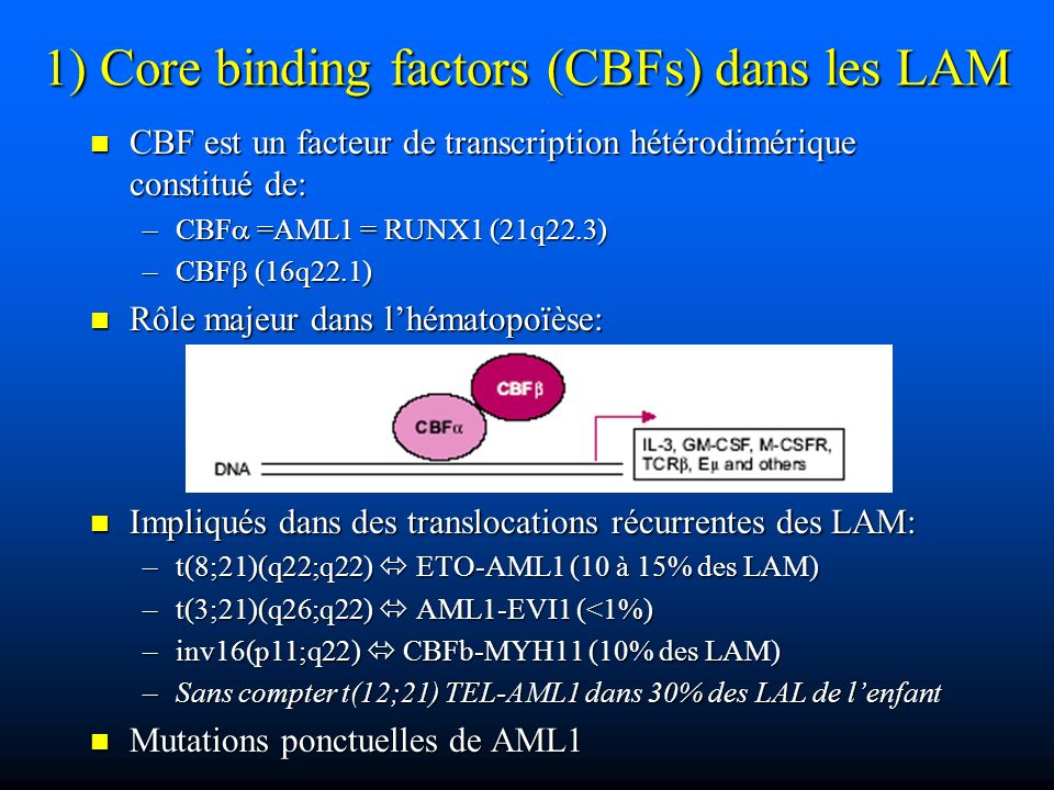 1) Core binding factors (CBFs) dans les LAM