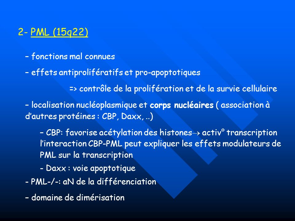 2- PML (15q22) fonctions mal connues