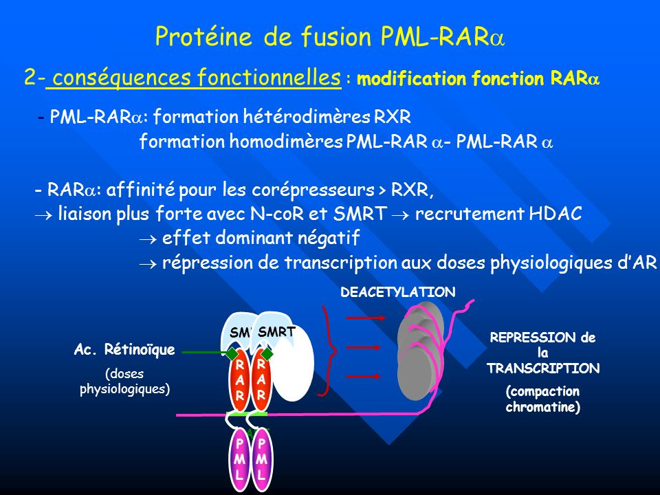 REPRESSION de la TRANSCRIPTION (compaction chromatine)