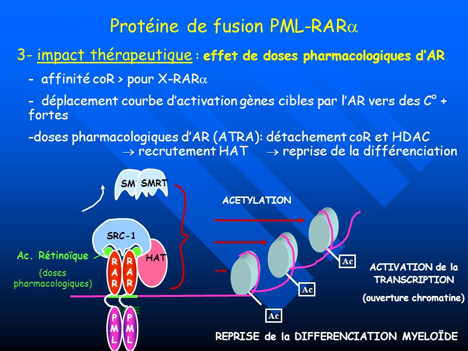 ACTIVATION de la TRANSCRIPTION (ouverture chromatine)