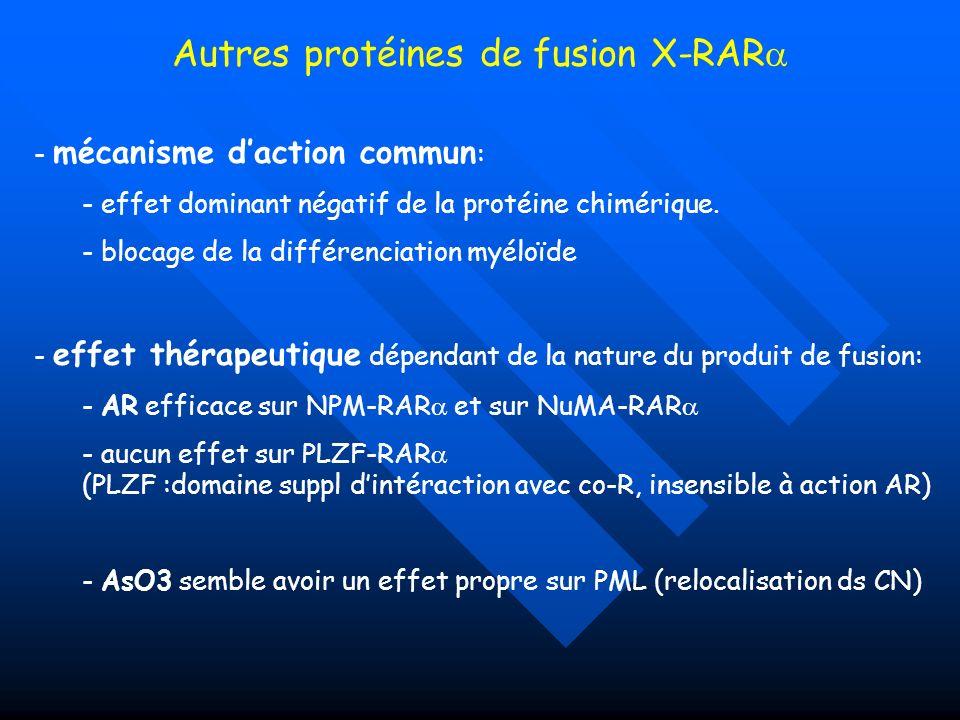 Autres protéines de fusion X-RAR