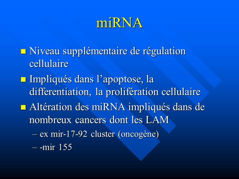 miRNA Niveau supplémentaire de régulation cellulaire