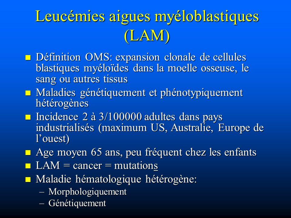 Leucémies aigues myéloblastiques (LAM)