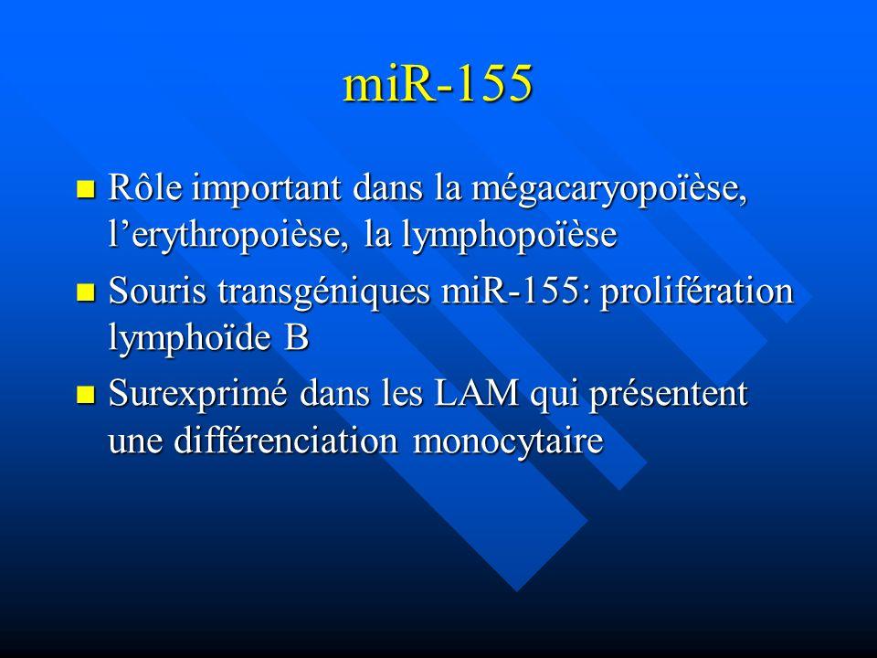 miR-155 Rôle important dans la mégacaryopoïèse, l'erythropoièse, la lymphopoïèse. Souris transgéniques miR-155: prolifération lymphoïde B.