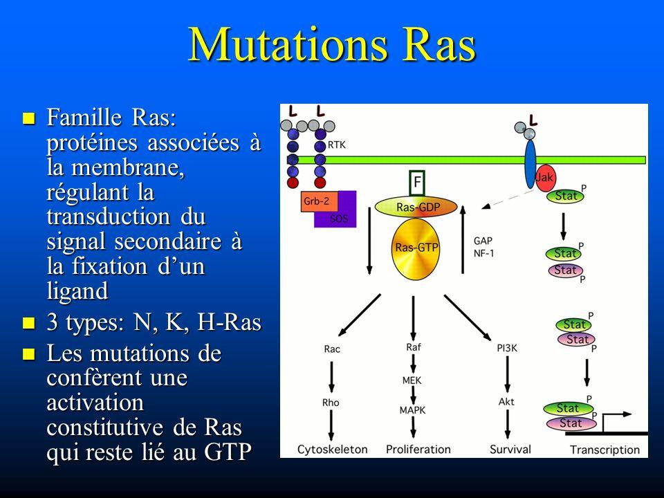 Mutations Ras Famille Ras: protéines associées à la membrane, régulant la transduction du signal secondaire à la fixation d'un ligand.