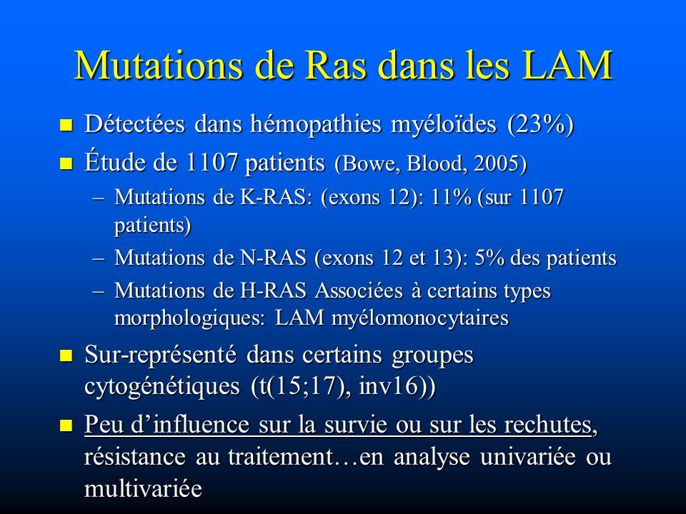 Mutations de Ras dans les LAM