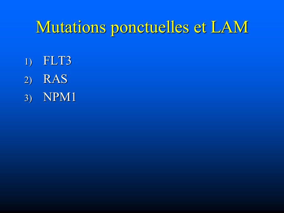 Mutations ponctuelles et LAM