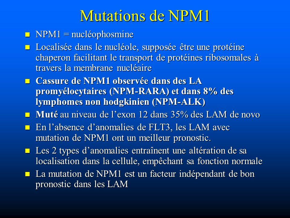 Mutations de NPM1 NPM1 = nucléophosmine