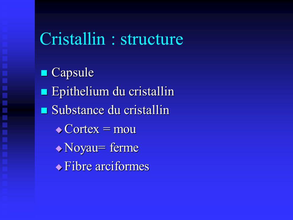 Cristallin : structure