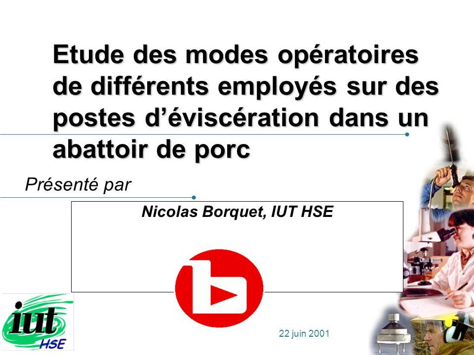 Nicolas Borquet, IUT HSE
