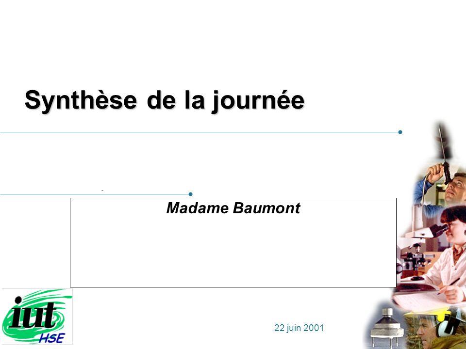 Synthèse de la journée Madame Baumont